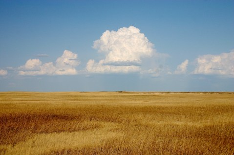Cumulus_Clouds_over_Yellow_Prairie2